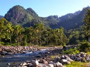 Daya Tarik Taman Nasional Kerinci Selbat