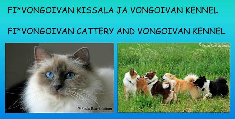 Vongoivan kissala ja kennel