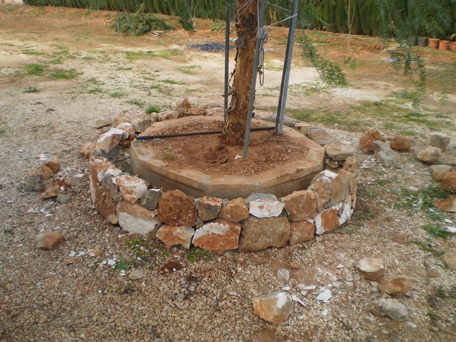 El blog de la elena un blog dulce divertido y for Jardineras de piedra natural
