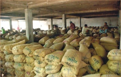 cold storage industry in india Cold storage is an integral component of postharvest management of many fruits, vegetables and processed products cold storage plays vital role in reducing postharvest losses of edible.