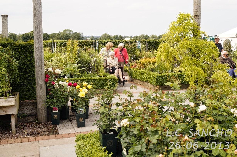 El jard n de la alegr a 01 17 15 for El jardin de la alegria cordoba