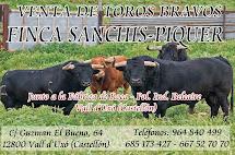 FINCA SANCHIS-PIQUER, VALL D'UXO