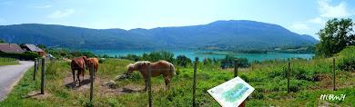 Lac D' Aiguebelette