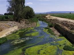 http://trabajarencas.blogspot.com.es/2012/12/el-agua-contaminada-de-una-gran-ciudad.html