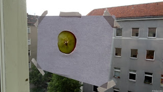 Apple Slice on Paper - Photo Shooting