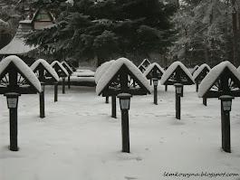 Przełęcz Małastowska. Cmentarz wojenny nr 60.