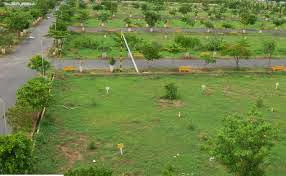 Rowfin Real Estate Vijayawada