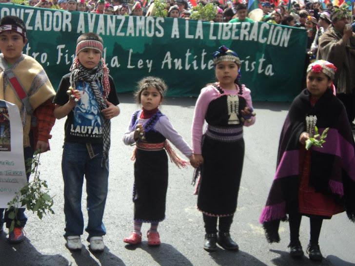Marcha Mapuche en Santiago (Ngulu Mapu)