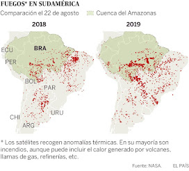 Se quema la selva amazónica.