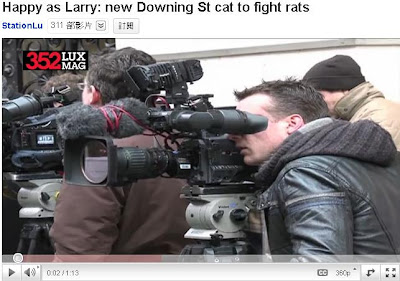 英國第一貓 英國第一貓 終於抓到老鼠