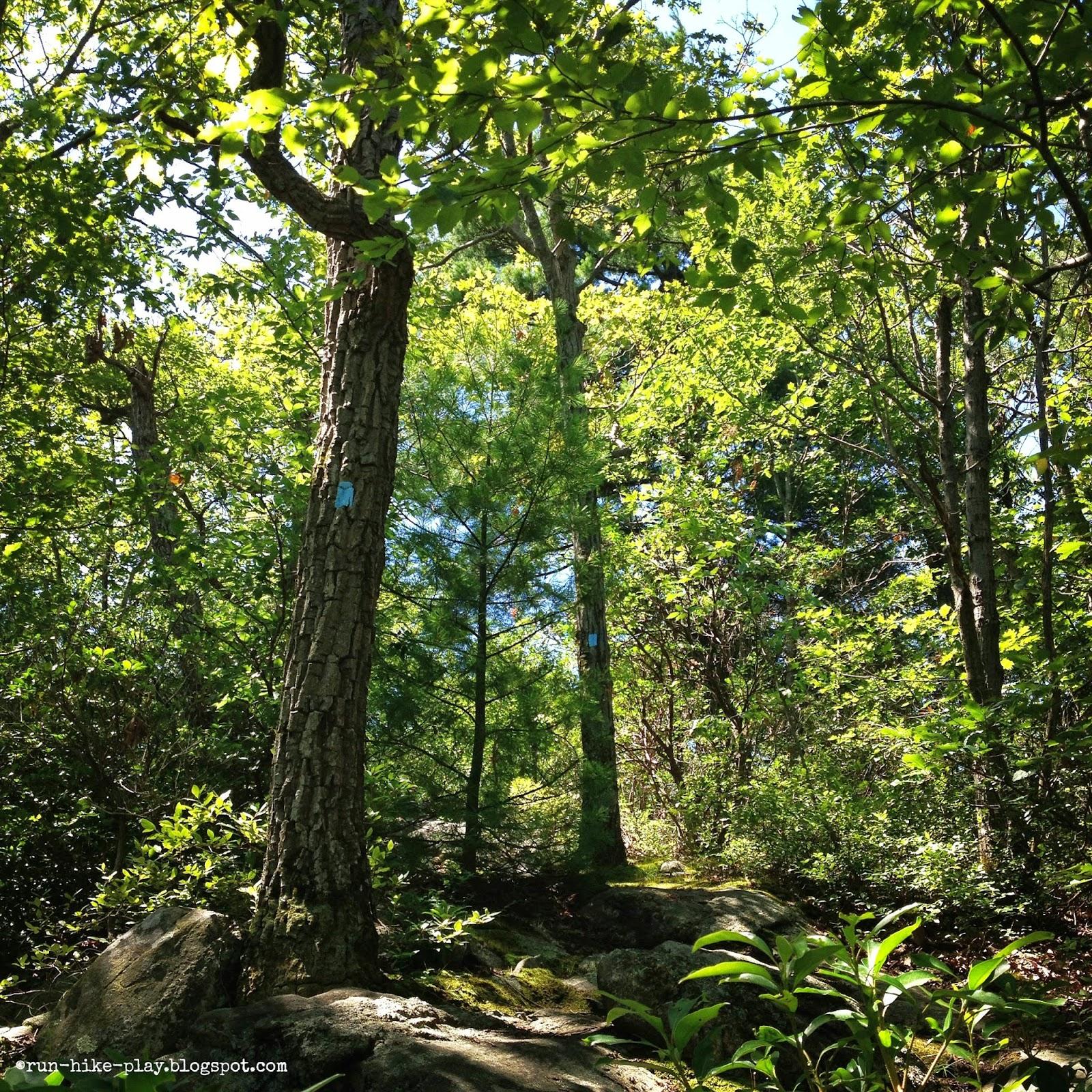 Torne Mountain Osio Rock trail