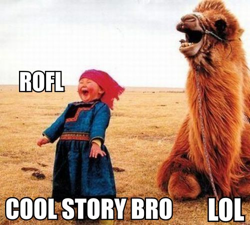 Cool Story Bro - ROFL LOL