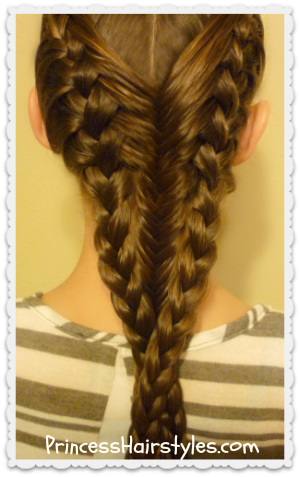 French Braids and Fishtail Braid Hairstyle