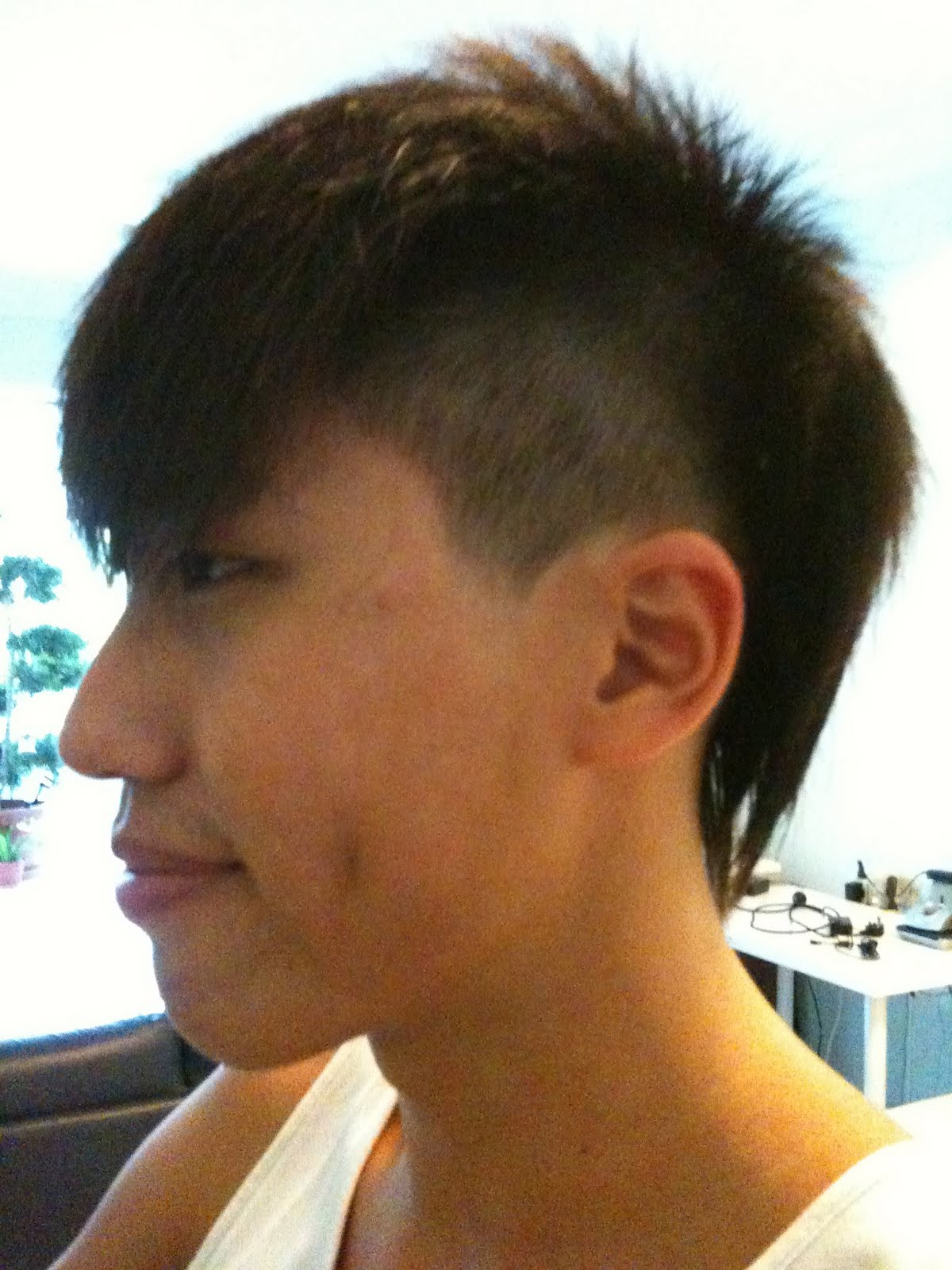 queue hairstyle wikipedia queue hair chinese history for