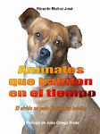 Animales que habitan en el tiempo