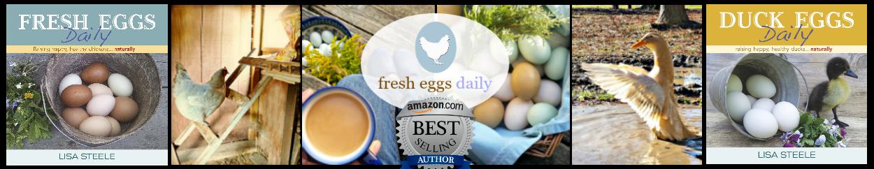 Fresh Eggs Daily®