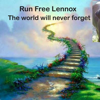 Lennox poster
