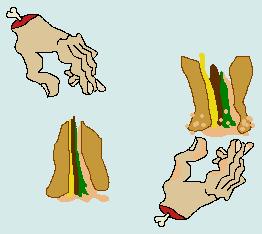 segurando um hamburger