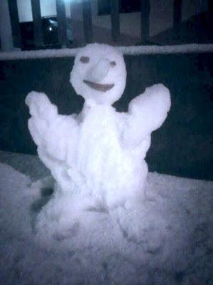 fotos bonecos de neves no Brasil