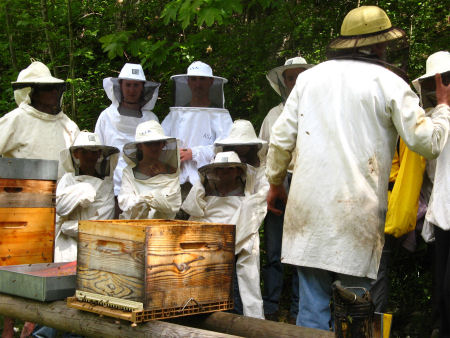 apiculteur 91