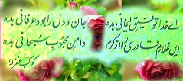 Quote...Allaamah Kaukab Noorani Okarvi
