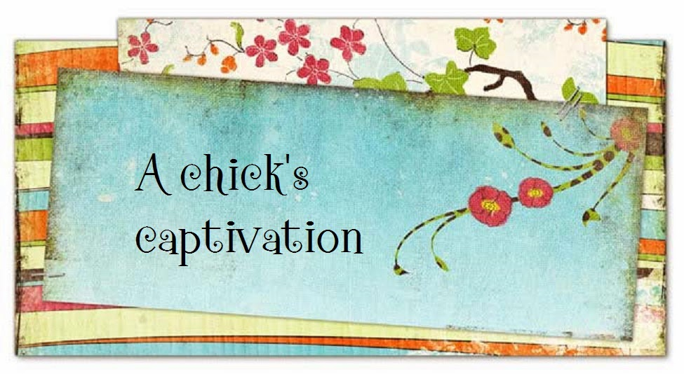 A Chick's Captivation