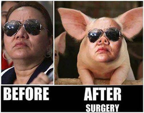 Janet-Lim Napoles' Latest Meme 4