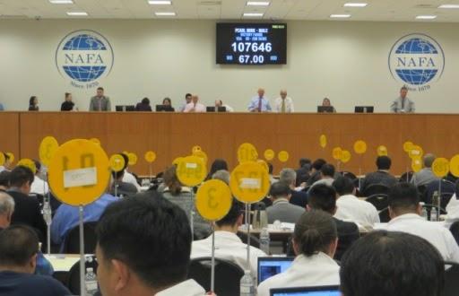 NAFA:Τα πρώτα αποτελέσματα της Δημοπρασίας Μαρτίου