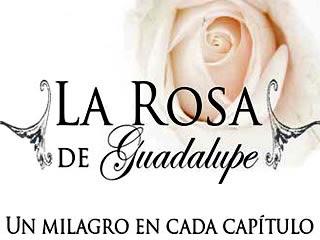 LA ROSA DE GUADALUPE, milagros diarios por la TV!