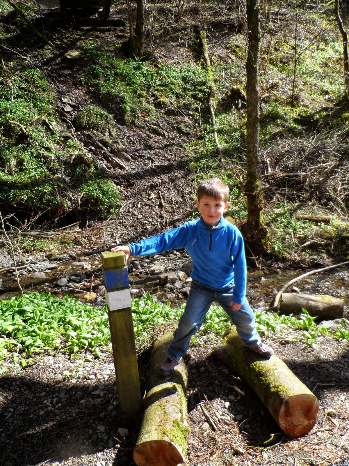 Grizedale Forest Gruffalo trail, natures playground.