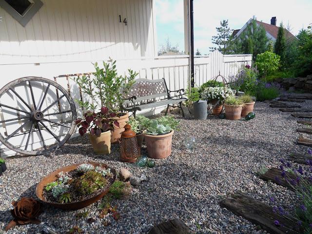 Hageliv og hagedesign: høsten 2011