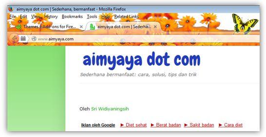 Gambar: Contoh Pemakaian Tema di Mozilla Firefox