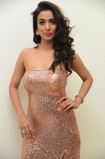 Heena Panchal Stills At Thikka Audio Launch (18).JPG