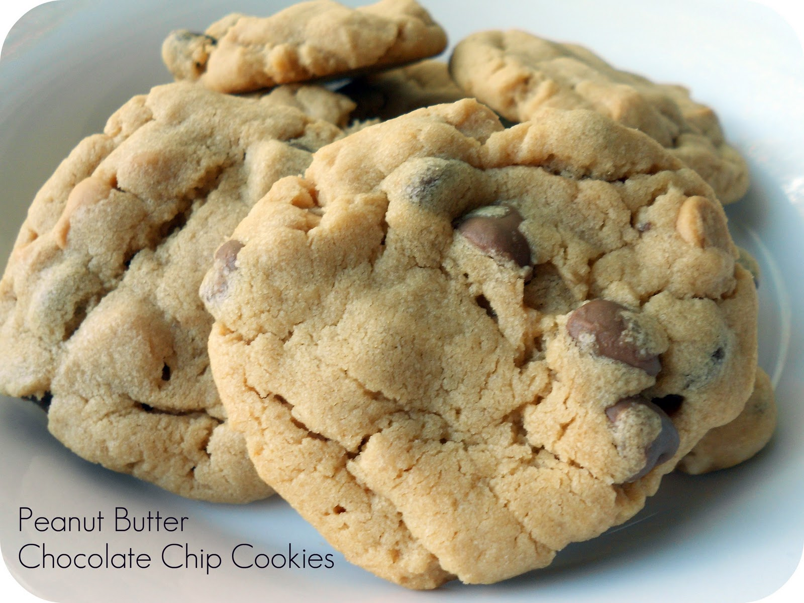 Classic Peanut Butter Chocolate Chip Cookies Recipe/Six ...