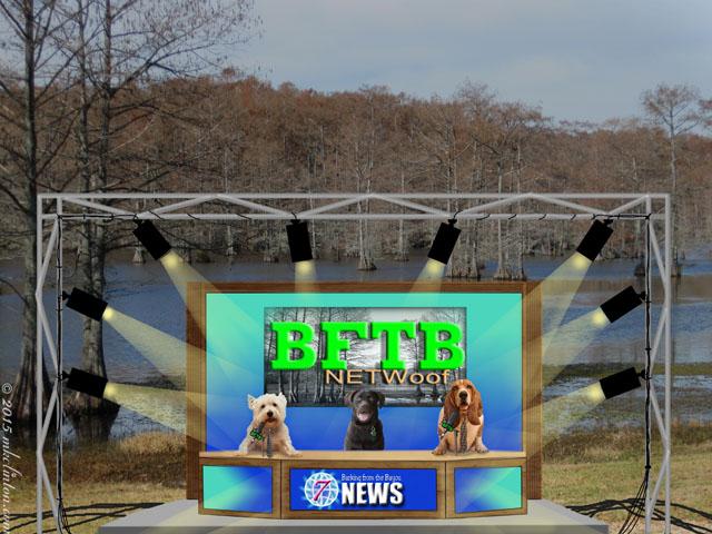 News set on the bayou with three dog news anchors