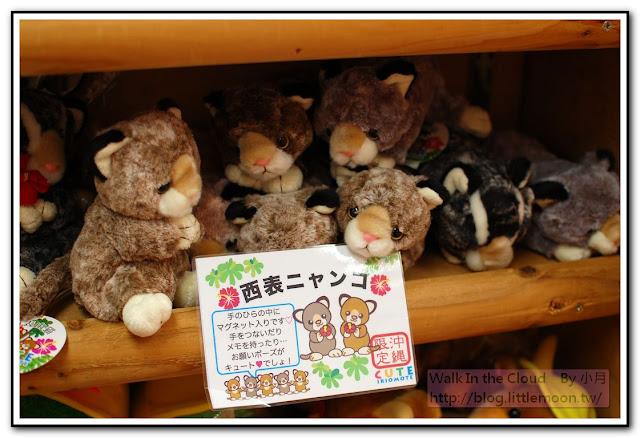 西表山貓 沖繩限定