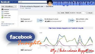 cara membuat facebook insights