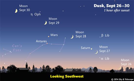 Trăng khuyết đầu tháng cùng Sao Thổ và hai thiên thể màu cam là hành tinh Hỏa cùng sao Antares đang tỏa sáng trên bầu trời hoàng hôn hướng tây nam vào các buổi chiều từ 26 tới 30/9/2014. Hình minh họa : SkyAndTelescope.
