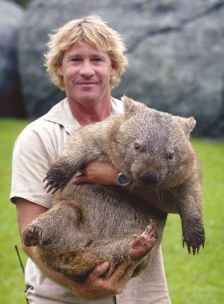Juego de formas - Página 2 5-wombat-1-2-6-4-2-1-2-3-4-1