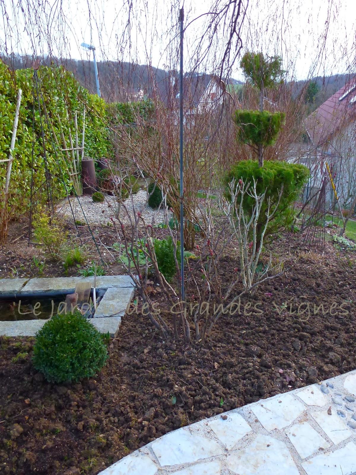 Le jardin des grandes vignes fleurs de saison - Le jardin des grandes vignes ...