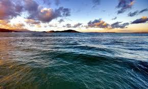 Datos Curiosos de los Oceanos