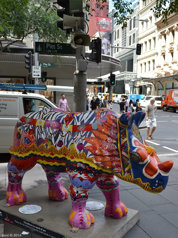 pacha the painted rhino