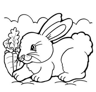 Desenhos de Coelhos para colorir jogos de pintar e imprimir - imagens para colorir coelho