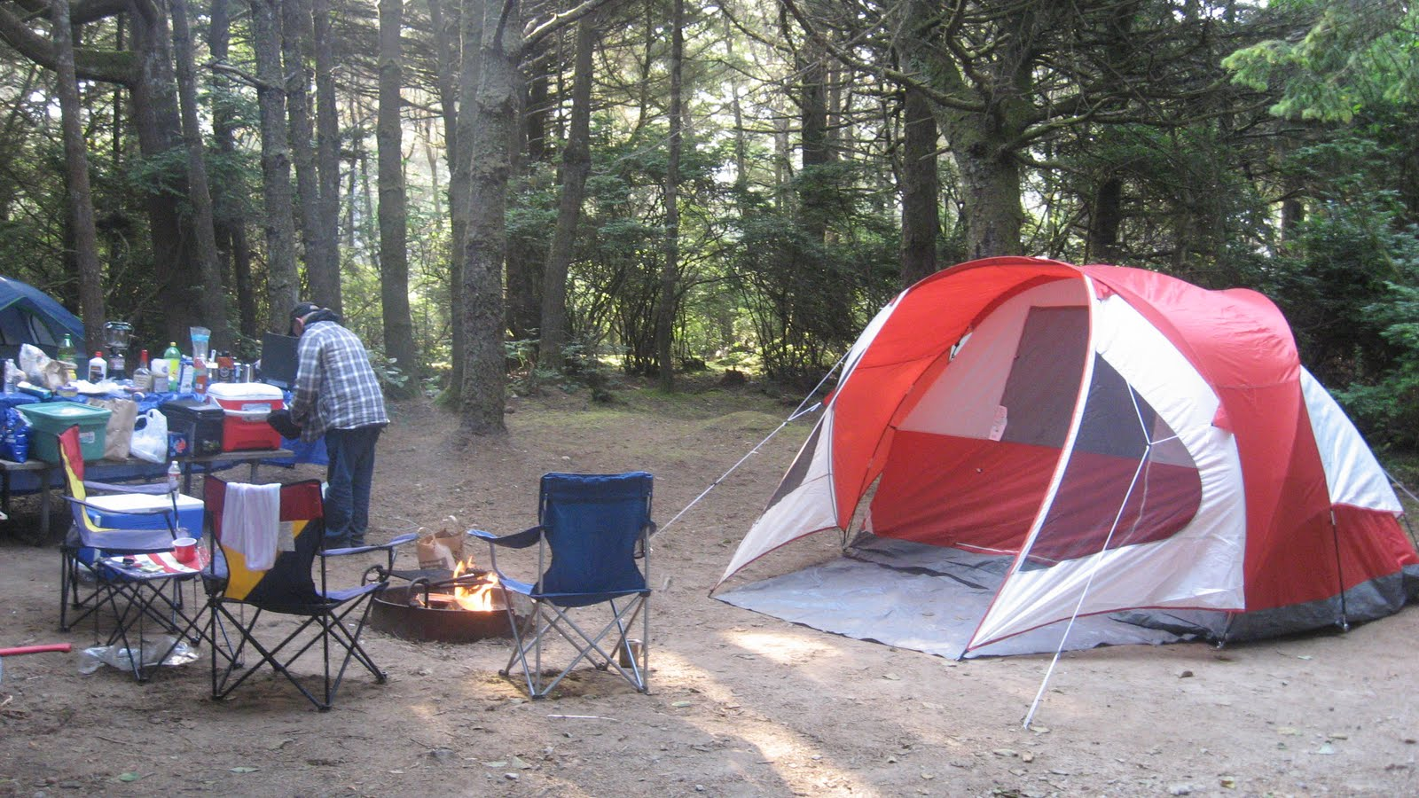 my first camping trip essays