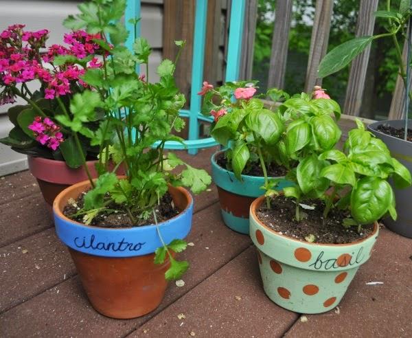 painted flower pots