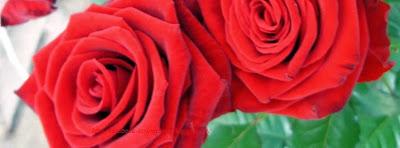 Une image de couverture facebook rose