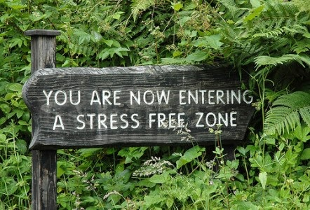 Blogging should always be a stress free zone