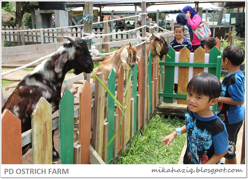 day trip from kl with kids ideas