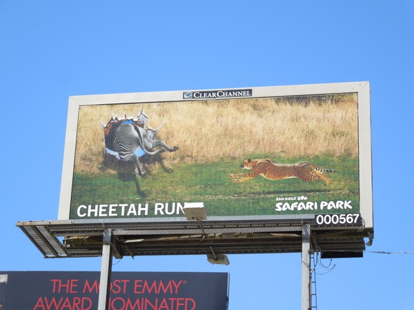 San Diego Zoo Cheetah Run billboard