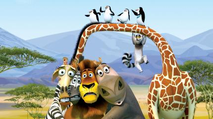 Alex, Marty Melman and Gloria posing with birds in Madagascar 2: Escape 2 Africa http://animatedfilmreviews.blogspot.com/2012/12/madagascar-escape-2-africa-2008-full-of.html
